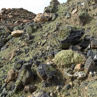 Peridotite at the mine site