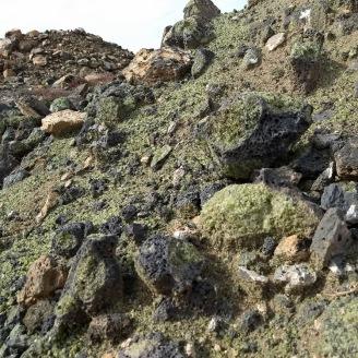 Peridotite at the mine site